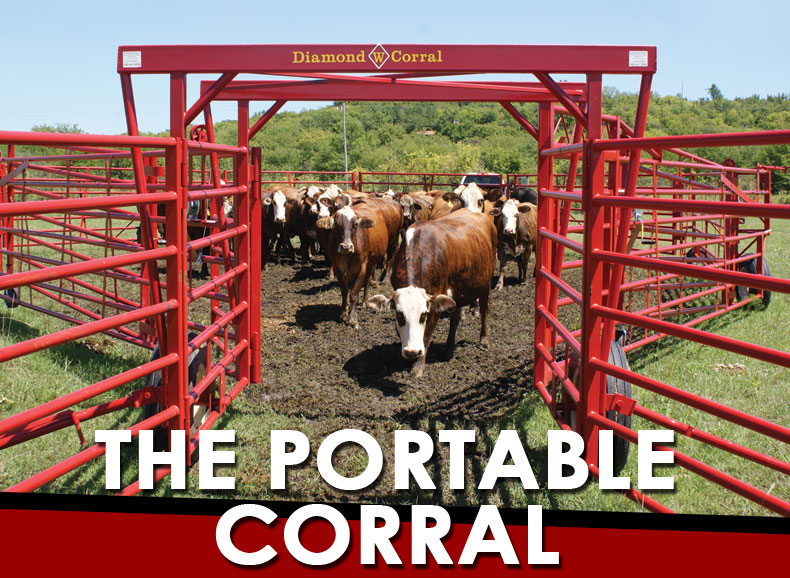 The Portable Corral for Cattle and Bulls
